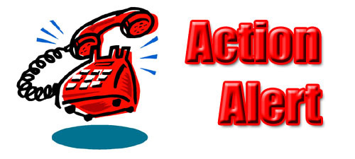 URGENT Call to Action: Tell Council Members to Vote NO!